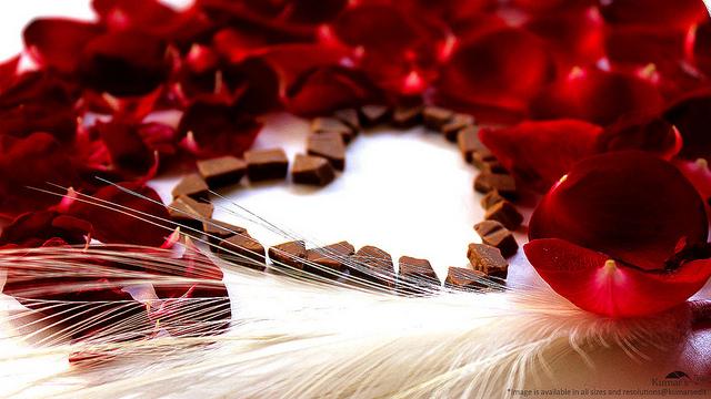 Indulge, Roses, Chocolate